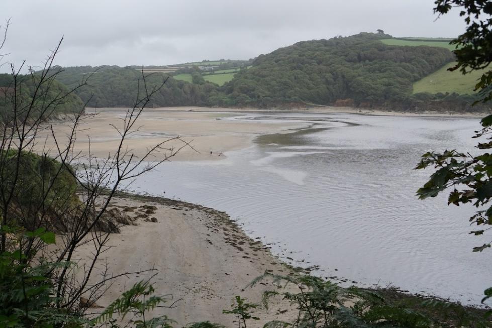 Erme Estuary