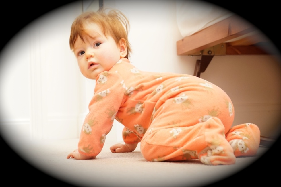 The Little Crawler